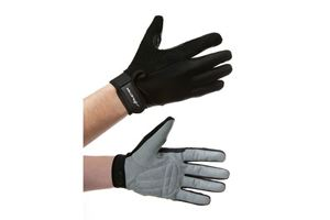 Picture of Avenir Gloves